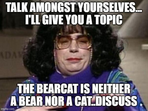TALK AMONGST YOURSELVES... I'LL GIVE YOU A TOPIC; THE BEARCAT IS NEITHER A BEAR NOR A CAT..DISCUSS   image tagged in coffee talk   made w/ Imgflip meme maker
